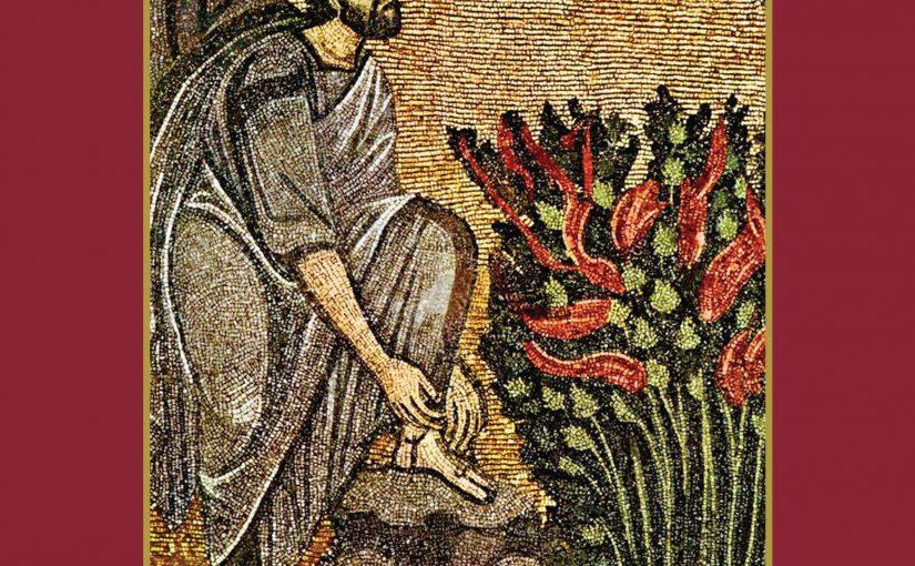 """Πρώτες κριτικές για το βιβλίο """"Λογοτεχνικές διαδρομές στην Αγία Γη"""" της Σοφίας Κιόρογλου"""